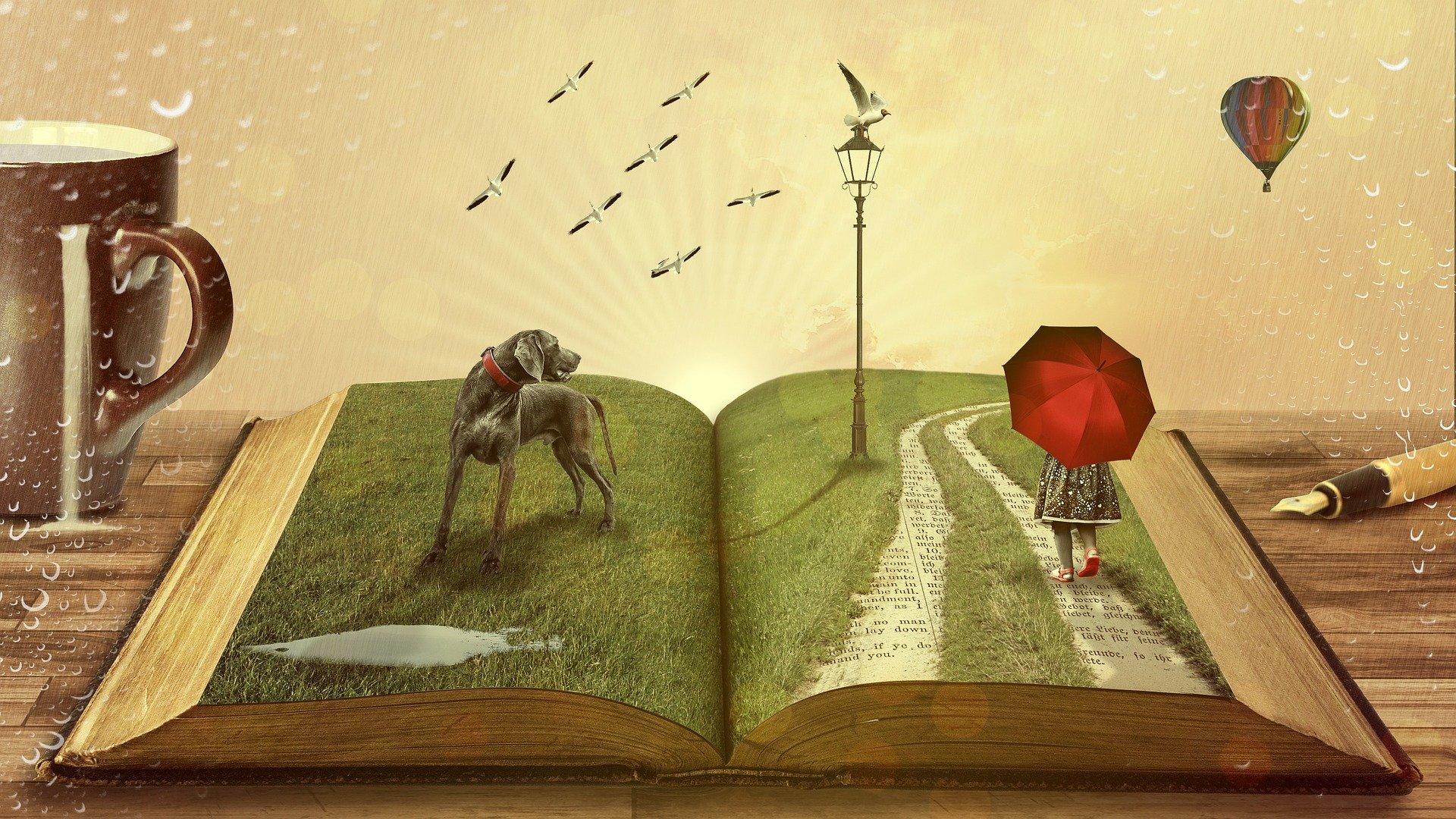 the beaty of books